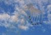 Os sete T-27 Tucanos da Esquadrilha da Fumaça saindo de um looping. Foto: Carlos Patrício.