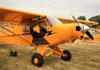 Piper PA-18. (24/07/2012) Foto: Celia Passerani.