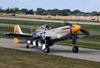 North American P-51D Mustang, N251CS. (27/07/2012) Foto: Celia Passerani.