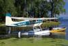 Cessna 182B Skylane, N8438T. (28/07/2012) Foto: Celia Passerani.