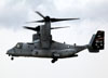 Bell-Boeing MV-22B Osprey, 168019, dos Marines. (01/08/2014) Foto: Celia Passerani.