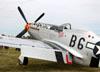 North American P-51D Mustang. (28/07/2014) Foto: Celia Passerani.
